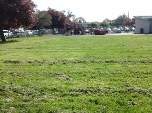 Victor Street School grounds