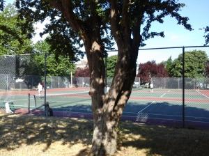 Todd Park Tennis Courts